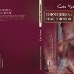 """Kate Chudakova """"Schneewittchen und die sieben Klone"""" Illustrationen für das Buch Publishing. """"Russische Welt Deutschland""""  Deutschland Hannover"""